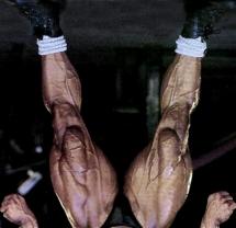 V- veida kājas un to trenēšanas īpatnības